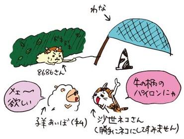 Moomusuwanacolor