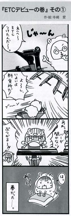 2010_2lbike1_2