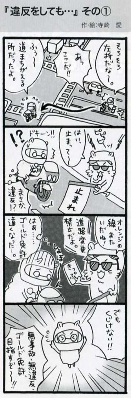 2010_6lbike1_2